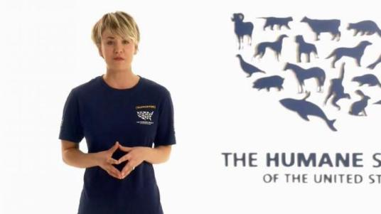 humane-society-stop-cruelty-featuring-kaley-cuoco-large-2